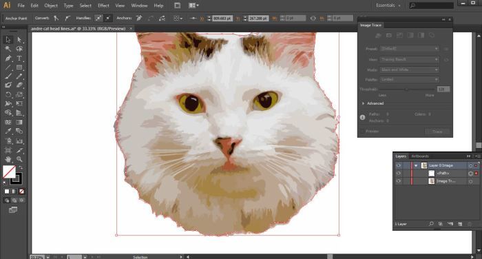 andre pen tool adobe illustrator how to