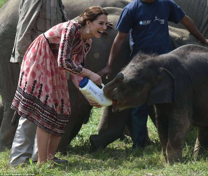 kate middleton india dress baby rhino